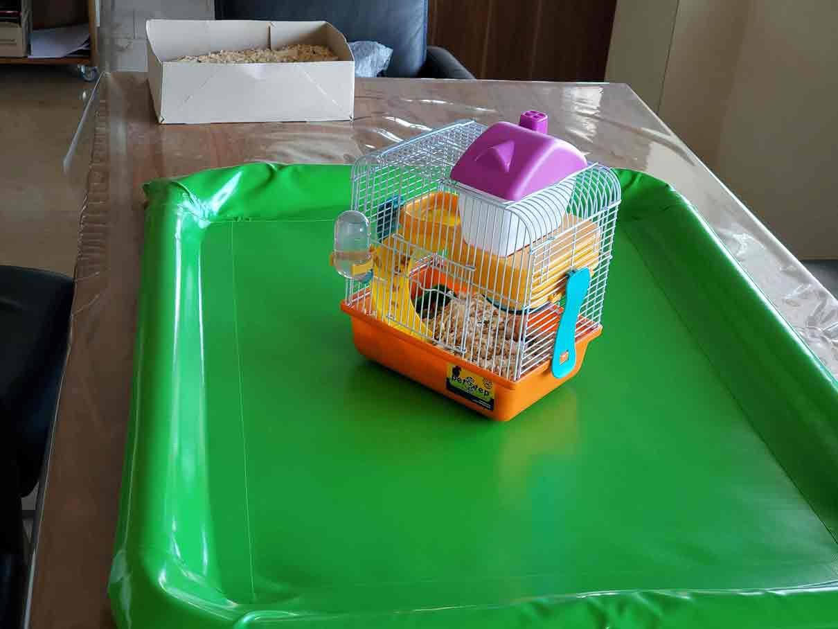 auffangwanne-hellgruen-hamster-1